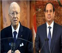 عاجل| بسام راضي: الرئيس السيسي يلتقي نظيره التونسي بشرم الشيخ