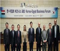 صور| شركات كورية: ضخ استثمارات جديدة في مصر بمجالات صناعة السيارات والسفن والنقل
