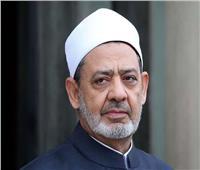طارق شعبان مديرًا لمرصد الأزهر للغات الأجنبية