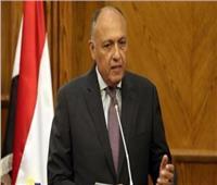 «شكري» يبحث مع المفوضة الأممية السامية شؤون حقوق الإنسان