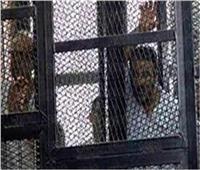 اليوم.. استكمال مرافعة الدفاع في محاكمة 32 متهمًا بـ«فض إعتصام النهضة»
