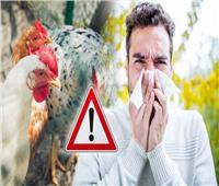 فيديو| الزراعة تعلن ظهور نوع جديد لمرض إنفلونزا الطيور