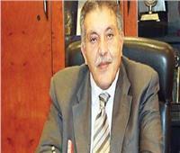 أحمد الوكيل: ٢٥% تراجعا في عدد المشروعات الليبية بمصر