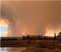 حرائق الغابات تدمر أكثر من 30 منزلا بولاية فيكتوريا الأسترالية