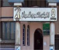 «القومى للمرأة» في شمال سيناء يحتفل بمبادرة «مصرية وافتخر»
