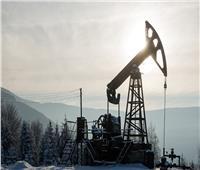 خبير اقتصادي: تحدي منطقة الشرق الأوسط هو خلق نمو اقتصادي مستدام لا يعتمد على النفط