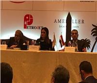 وزير الكهرباء يطرح الفرص الاستثمارية أمام مجلس الأعمال المصري الياباني