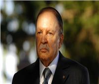 الجزائر تنتظر قرار المجلس الدستوري بشأن مصير بوتفليقة
