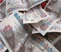 فيديو| تعرف على أكبر فئة دافعة للضرائب في مصر