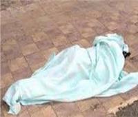 حبس عاملين قتلا سيدة وألقيا جثتها بالطريق العام في المعصرة