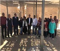 صور| وزيرا الآثار والسياحة يتفقدان معابد فيلة بأسوان
