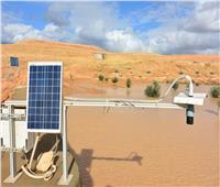 اليوم.. بحوث الصحراء ينظم ورشة عمل حول «الأنظمة البيئية السليمة لتنمية المراعي»
