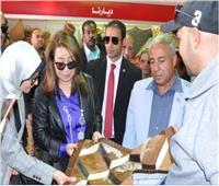وزيرة التضامن ومحافظ أسوان يفتتحان معرض «ديارنا لمنتجات الأسر المنتجة»