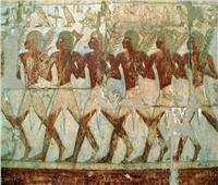 حكايات| أضخم بعثة فرعونية لـ«بونت».. الذهب مقابل الزراف والنسانيس وأشجار البخور