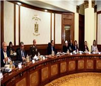 الحكومة تكشف حقيقة إعفاء سيارات المصريين بالخارج من الجمارك