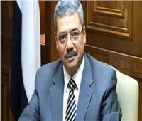 ياسر رفعت: القومي للبحوث نجح في التوصل إلى حل لأزمة إنفلونزا الطيور