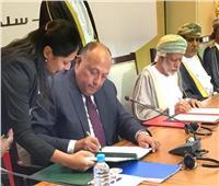 حقيقة تصريحات وزير الخارجية بشأن عودة سوريا إلى الجامعة العربية