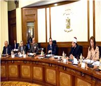 رسميا.. «الوزراء» يوافق على فصل موظفي الحكومة مدمني المخدرات