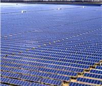 فيديو  «الكهرباء»: مشروع «بنبان» يوفر 10 آلاف فرصة عمل