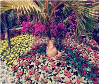 صور| لوحات فنية من النباتات النادرة بمعرض زهور الربيع