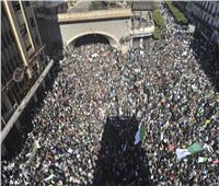 ارتفاع أعداد المحتجين.. مئات الآلاف يحتشدون في الجزائر للمطالبة برحيل بوتفليقة