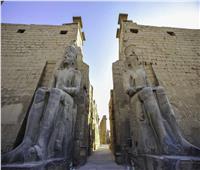 «النقل السياحي» تدرب 400 سائق بالاقصر