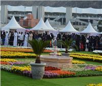 بالصور.. مليون زهرة تجسد أكبر سجادة في مكة
