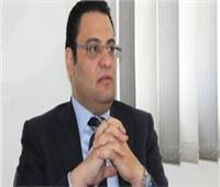 السفير محمود عفيفي: القمة العربية بتونس تناقش ٢٠ ملفاً