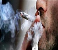 مسئول بـ«مكافحة الإدمان»: المخدرات سبب رئيسي في 78% من الجرائم في مصر