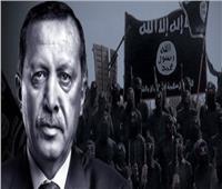 بالفيديو| قناة سعودية تكشف فضيحة «أوردغان» وأكذوبة محاربة «داعش»