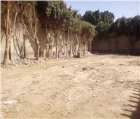 إزالة 31 حالة تعد على الأراضي الزراعية بالمنيا