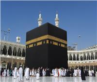 «الشركات السياحية» تبحث أخر مستجدات ملف العمرة