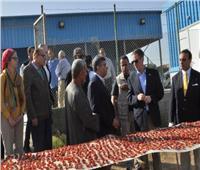 المدير العام للوكالة الأمريكية: مشروع «الأعمال الزراعية» يوفر 12 ألف فرصة عمل