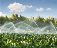 فيديو| الزراعة: نعمل على تحسين إنتاجية المزارعين