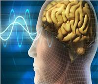 دراسة: الدماغ البشري قادر على اكتشاف المجال المغناطيسي للأرض