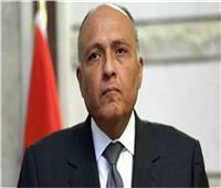 سامح شكري: الشراكة المصرية الأمريكية تحقق مصالح الطرفين