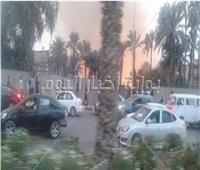 صور| حريق بقطعة أرض في الهرم