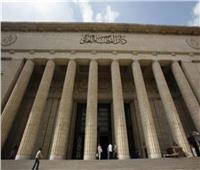 غدا.. نظر استئناف النيابة ضد «دريم بارك» لاتهامها بالتهرب الضريبي