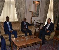 وزير الخارجية ونظيره الإريتري يبحثان مشروعات التعاون والقضايا الإقليمية