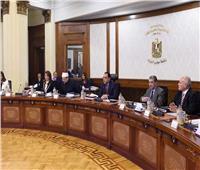 الحكومة توافق على قرار رئاسي بتنظيم مكتبات مصر العامة