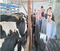 «أبوستيت»: الدولة تشجع القطاع الخاص لتوفير الأمن الغذائي وفرص العمل