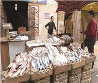 بسبب «الأسعار الجنونية».. ركود في «سوق السمك» والدواجن