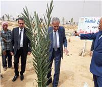 وزير التموين يزرع نخلة في حديقة المطار بالوادي الجديد