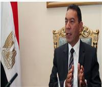 الناظر: «مصر تستطيع» تهدف لإعداد قاعدة بيانات للعلماء المصريين بالخارج