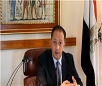 سفير مصر بجنوب أفريقيا: مستعدون لاستقبال الناخبين في الاستفتاء