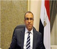السفارة المصرية ببرلين تنهي استعدادتها لاستقبال الناخبين في الاستفتاء على الدستور