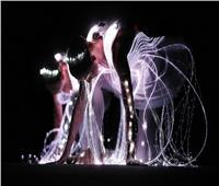 صور| عندما يرقص الضوء يرقص الباليه