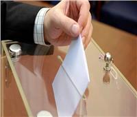 بدء تصويت المصريين باليابان وكوريا الجنوبية في الاستفتاء على التعديلات الدستورية
