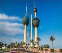 سليم: إقبال المصريين في الكويت على الاستفتاء فاق التوقعات