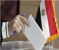 التعديلات الدستورية 2019| تخصيص لجنة للوافدين بالمنطقة الحرة بالاسماعيلية